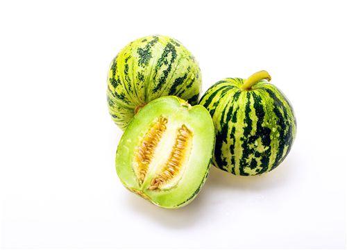 2019种植香瓜赚钱吗?附4个增产小妙招!